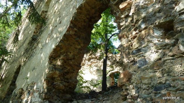 Ruine Schmirnberg
