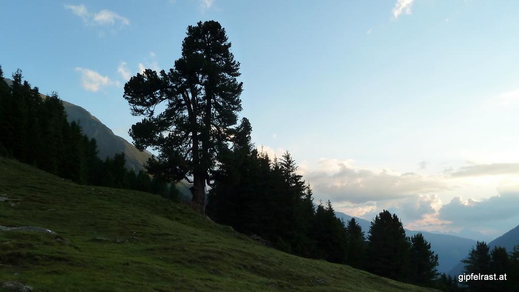 Morgenstimmung beim Aufstieg zum Satteljoch