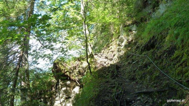 Am Fuchssteig