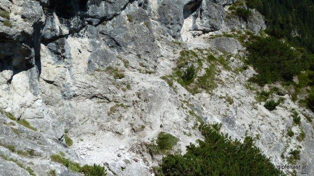 Wegsuchbild (Hinweis: von links unten nach rechts oben)