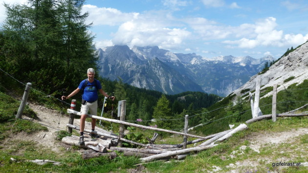 Im Niemandsland: Der Grenzzaun zwischen Oberösterreich und der Steiermark