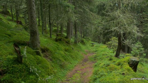 Abstieg nach Donnersbachwald