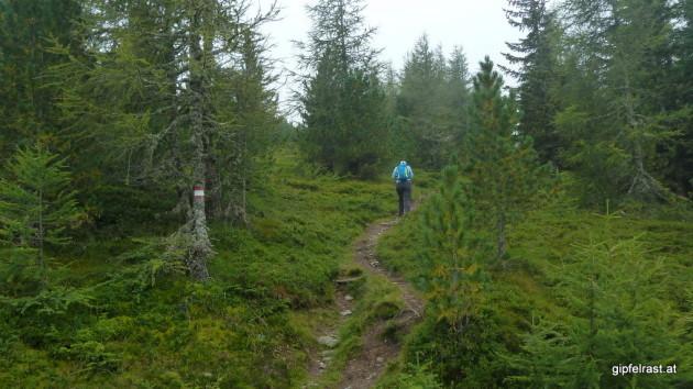 Aufstieg zur Haidnerhöhe