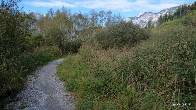 Am Radweg unterm Dobratsch