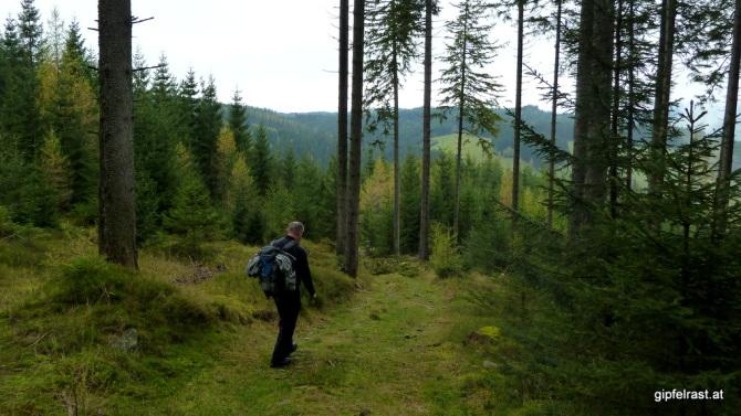 Durch den Wald hinunter zum Lendkreuz