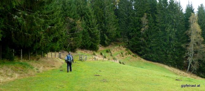 Mariazellerweg 06B: Durch die Waldheimat