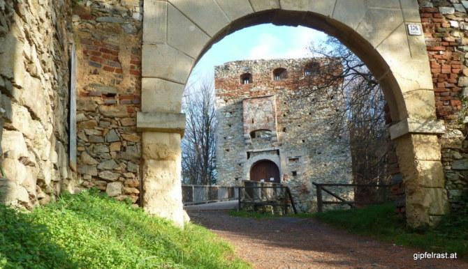 Die Burgruine Landsee