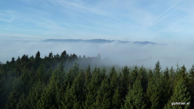 Weitblick übers Nebelmeer zum Hochwechsel