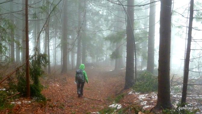 Nebel und Nieselregen sind heute unsere ständigen Begleiter