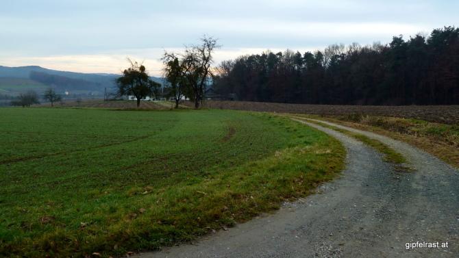 Auf Feldwegen ins Safental