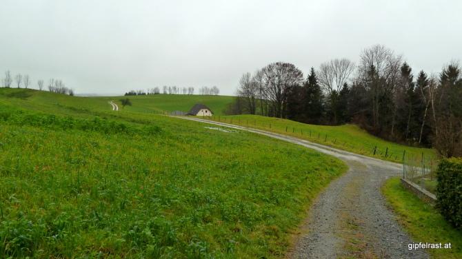 Auf Feldwegen hinunter ins Tal der Lafnitz