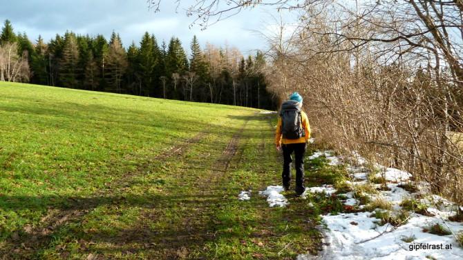 Über saftige Wiesen - mitten im Dezember!