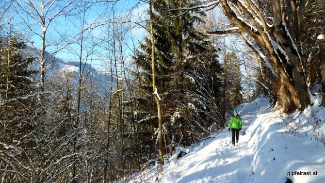 Entlang der Thumersbacher Höhenpromenade