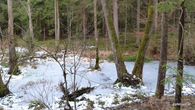 Knapp vorm Ziel finden wir doch noch einen Hauch von Winter...