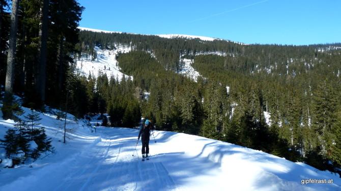 Forstweg zur Grünangerhütte