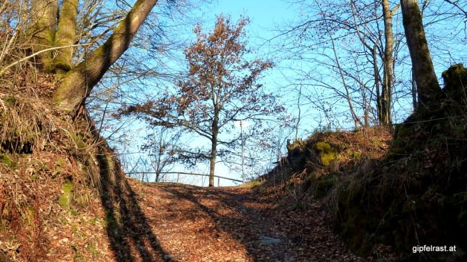 Steil hinauf verlassen wir das Donautal