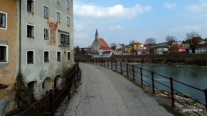 Wieder bei Oberndorf und Laufen