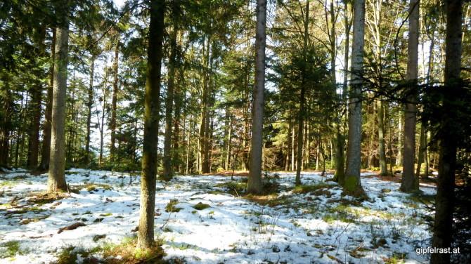 Noch liegt Schnee, aber der Frühling ist schon zu spüren!