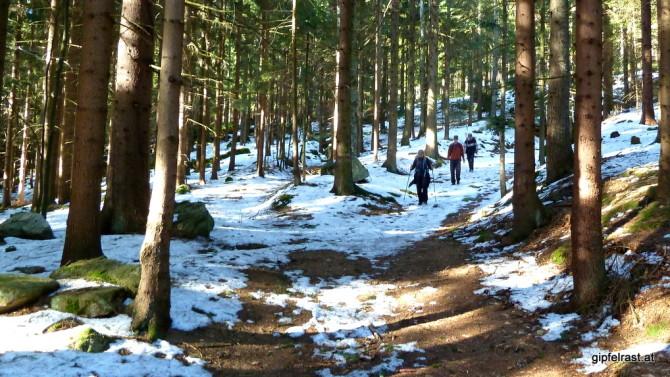 Abstieg vom Bärenstein, wir lassen den Winter hinter uns