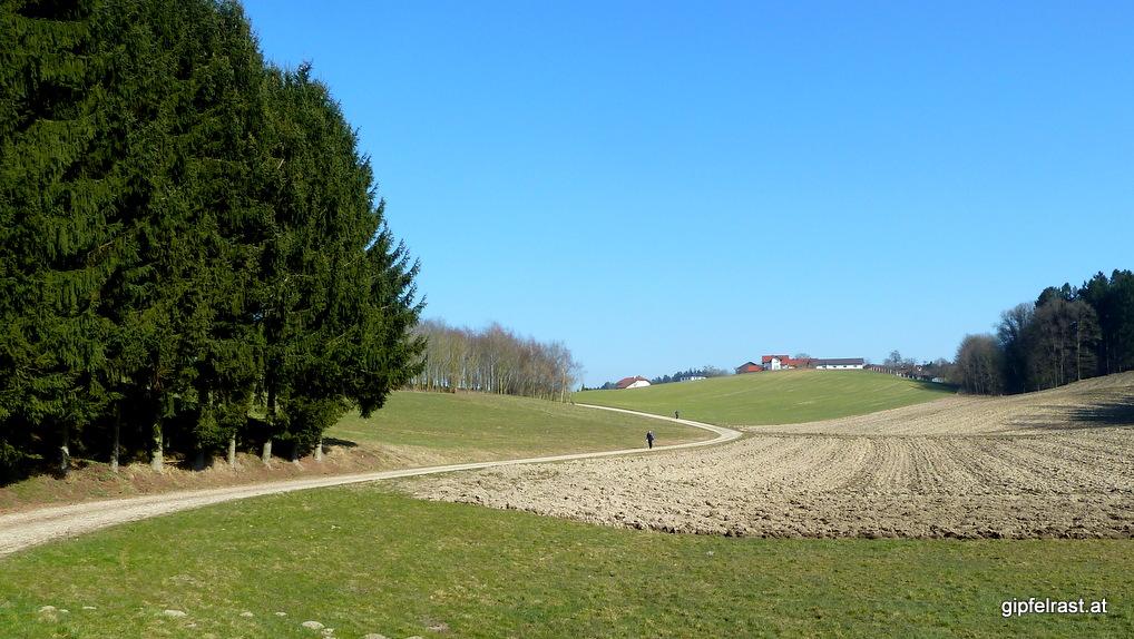 Weit auseinander gezogenes Verfolgerfeld knapp vor der Ortschaft Lichtegg