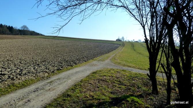 Zwischen unbestellten Feldern verläuft der Weg