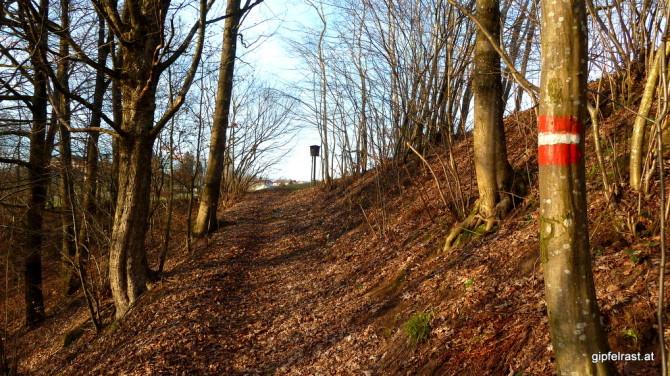 Wanderweg im Rannatal