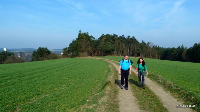 Feines Wandern über Feldwege