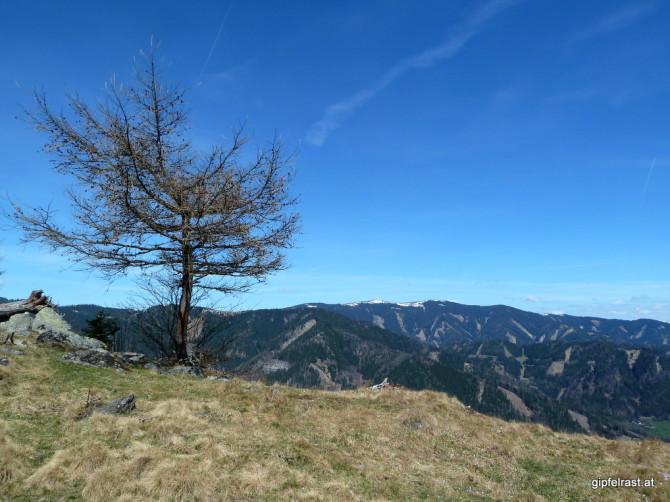 Blick zum Doppelgipfel von Herrenkogel und Wetterkogel