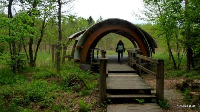 Beobachtungswarte Niedermoor