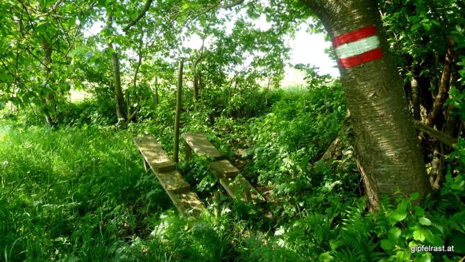 Hat wohl schon lange kein Mariazellwanderer mehr benutzt: Zaunüberstieg ohne Zaun