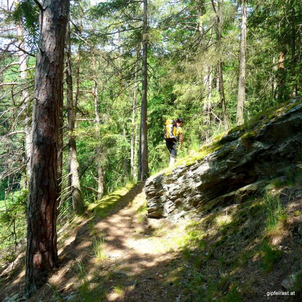 Beinahe alpine Wälder