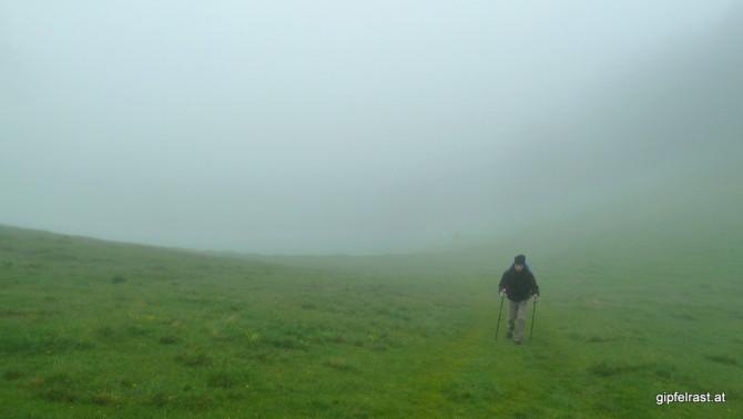 Aus dem Nebel - in den Nebel