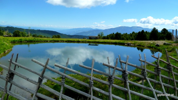 Teich bei der Rohrerhütte