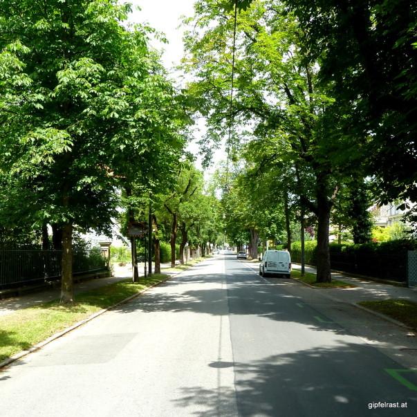Auf der Zielgeraden: Schubertstraße
