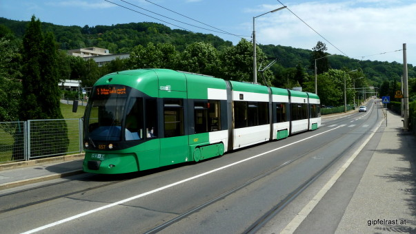 In grün-weiß zum Startpunkt