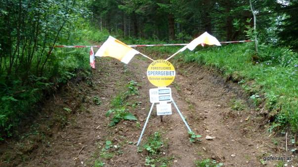 Forstarbeiten: Hier komme ich nicht durch!