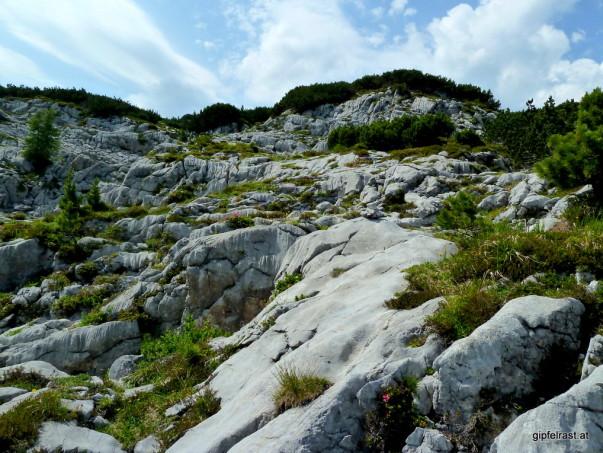 Aus dem Kalkstein hat das Wasser Jahrtausende lang sie verschiedensten Formen herausgearbeitet.