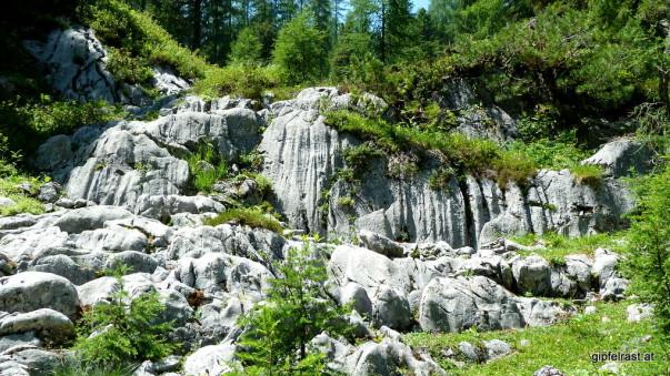 Ein Wasserfall aus Kalkgestein