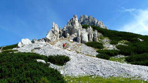Vom Hirscheggsattel geht's wieder steil bergauf!