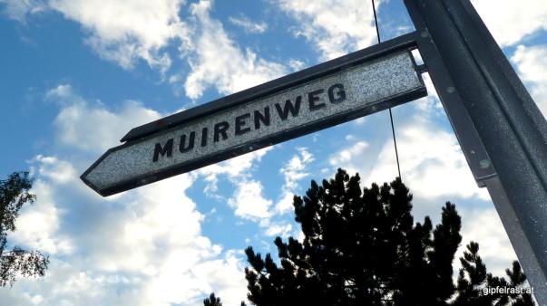 Jö, schau! Sogar einen John Muir Trail gibt es hier...