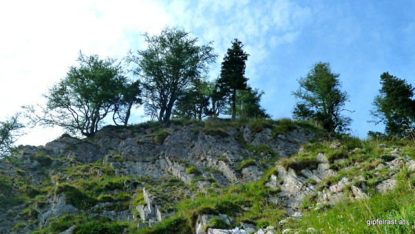 Das geübte Geologenauge erkennt hier die berühmte Polster'sche Winkeldiskordanz. Den anderen erklärt eine Informationstafel die verschiedenen Gesteinsschichten.