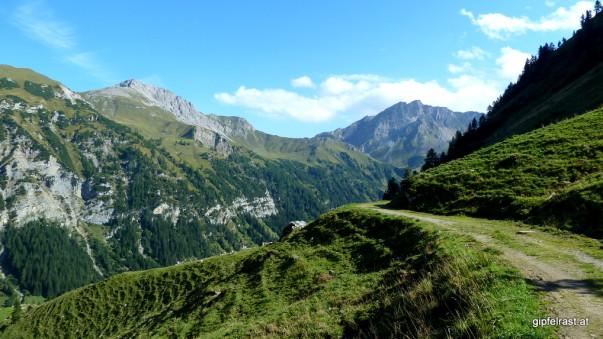 Almweg mit Beinahe-Rückblick zur Pfälzer Hütte (der grasige Rücken verstellt den Blick)