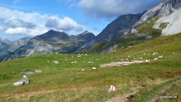 Die Schweiz wird ihrem Ruf gerecht: Das perfekte Heidi-Idyll