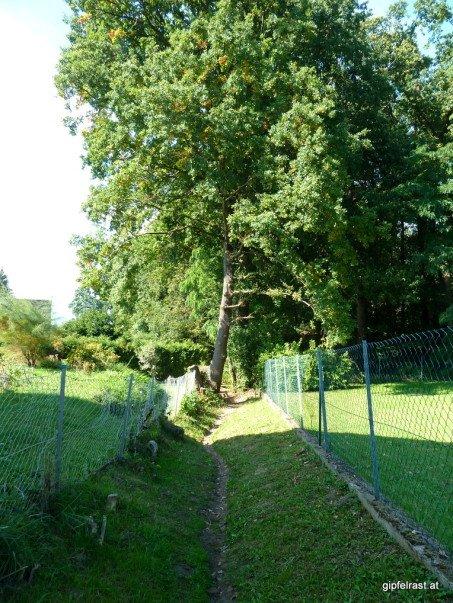 Zwischen den Gärten