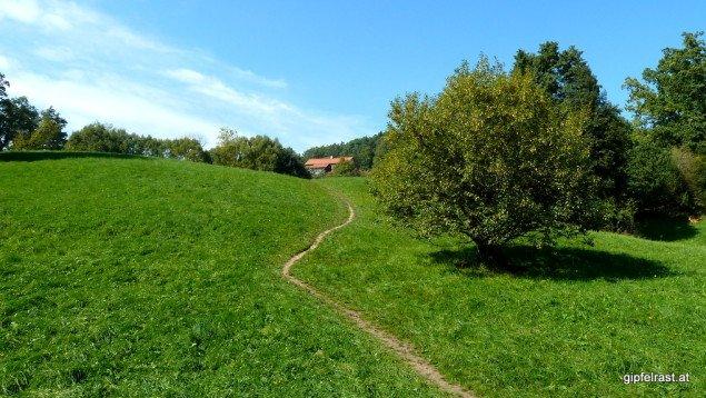 Am Weg hinauf zum Lustbühel