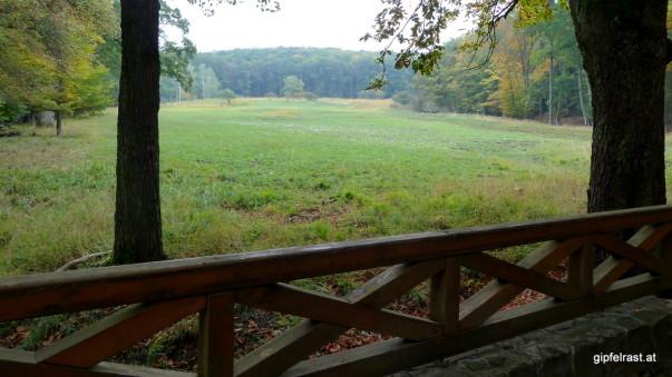 Wie jede gehäufte Ansammlung von Grashalmen im Wienerwald hat sicher auch diese Wiese einen klingenden Namen