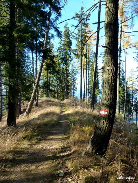 Am Weg hinunter nach Frauenberg