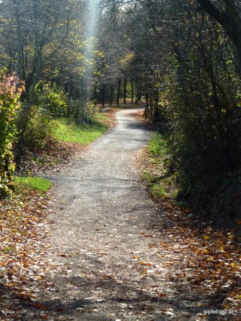 Herbstliche Wege