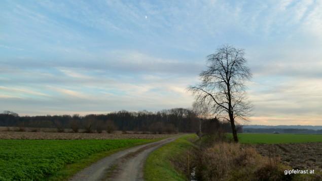 Feldweg bei Oberrakitsch