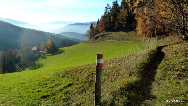 Schmalspurweg (1)